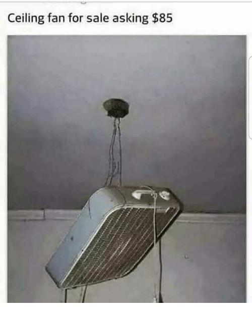 ceiling fan for sale asking 85 meme on sizzle