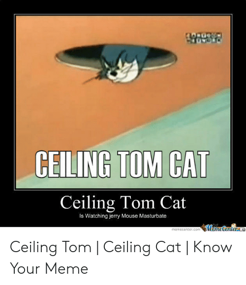 Jerry Mouse: CEILING TOM CAT  Ceiling Tom Cat  Is Watching jerry Mouse Masturbate  MameCenterae  memecenter.com Ceiling Tom   Ceiling Cat   Know Your Meme