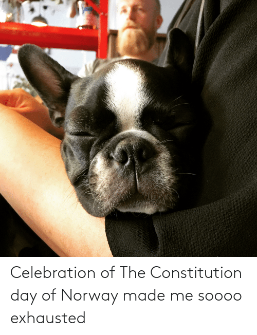 constitution day: Celebration of The Constitution day of Norway made me soooo exhausted