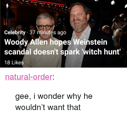 """Woody Allen: Celebrity 37 minutes ago  Woody Allen hopes Weinstein  scandal doesn't spark witch hunt  18 Likes <p><a href=""""https://natural-order.tumblr.com/post/166428716086/gee-i-wonder-why-he-wouldnt-want-that"""" class=""""tumblr_blog"""">natural-order</a>:</p>  <blockquote><p>gee, i wonder why he wouldn't want that</p></blockquote>"""