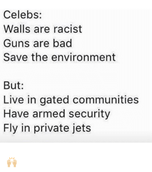 Memes, Racist, and 🤖: Celebs:  Walls are racist  Guns are bad  Save the environment  But  Live in gated communities  Have armed security  Fly in private jets 🙌🏼