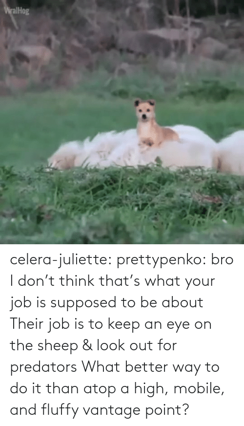 Mobile: celera-juliette:  prettypenko: bro I don't think that's what your job is supposed to be about    Their job is to keep an eye on the sheep & look out for predators What better way to do it than atop a high, mobile, and fluffy vantage point?