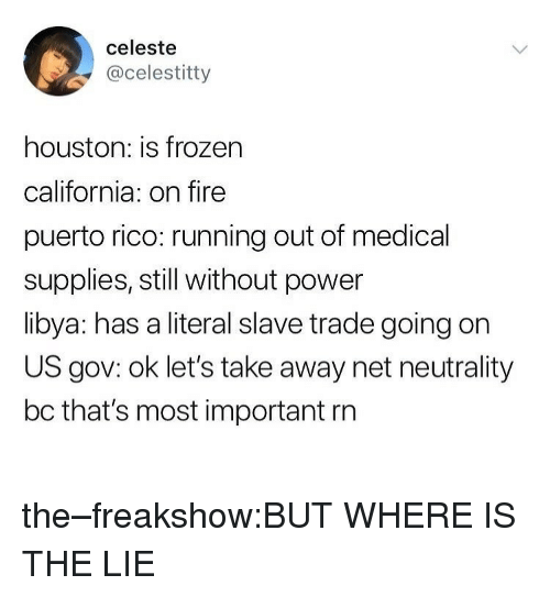 slave trade: celeste  @celestitty  houston: is frozen  california: on fire  puerto rico: running out of medical  supplies, still without power  libya: has a literal slave trade going on  US gov: ok let's take away net neutrality  bc that's most important rn the–freakshow:BUT WHERE IS THE LIE