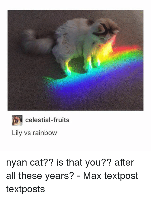 Best Nyan Cat Song Meme