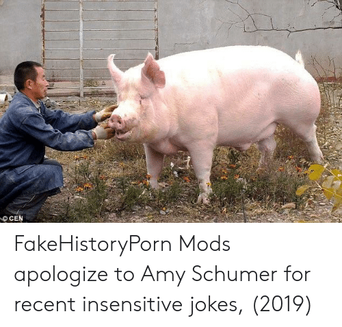 Amy Schumer: CEN FakeHistoryPorn Mods apologize to Amy Schumer for recent insensitive jokes, (2019)