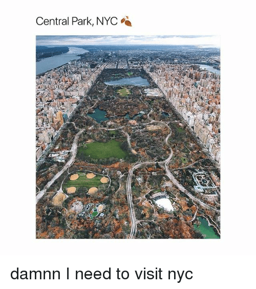 Girl Memes, Nyc, and Central Park: Central Park, NYC damnn I need to visit nyc