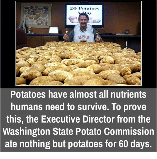 Memes, Potato, and 🤖: CEO Potatoes  Potatoes have almost all nutrients  humans need to survive. To prove  this, the Executive Director from the  Washington State Potato Commission  ate nothing but potatoes for 60 days.