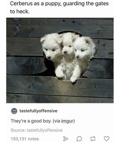 Good, Imgur, and Puppy: Cerberus as a puppy, guarding the gates  to heck.  to  tastefullyoffensive  They're a good boy. (via imgur)  Source: tastefullyoffensive  153,131 notes