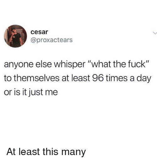 """or is it just me: cesar  @proxactears  anyone else whisper """"what the fuck""""  to themselves at least 96 times a day  or is it just me At least this many"""