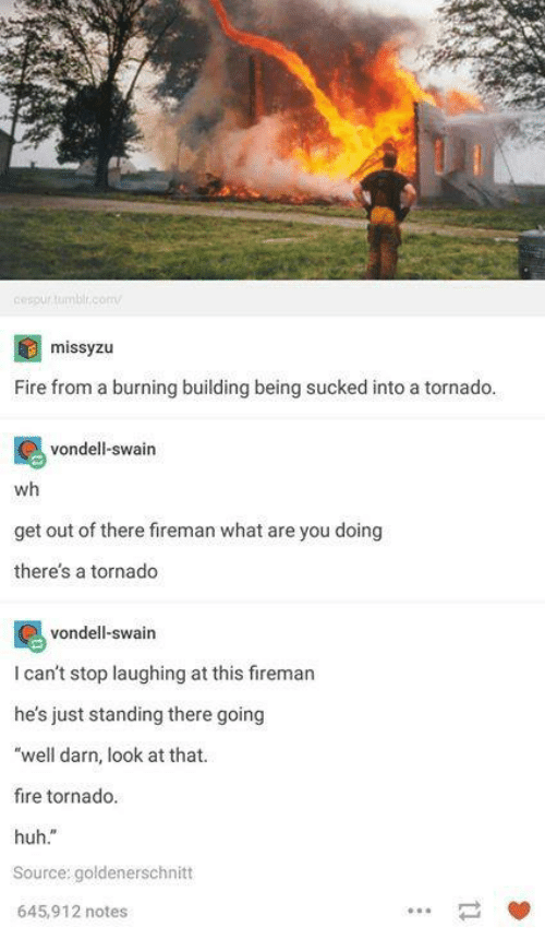 "Fire, Huh, and Tornado: cespurtumbl.comv  missyzu  Fire from a burning building being sucked into a tornado  vondell-swain  wh  get out of there fireman what are you doing  theres a tornado  vondell-swain  I can't stop laughing at this firemar  he's just standing there going  ""well darn, look at that.  fire tornado.  huh.""  Source: goldenerschnitt  645,912 notes  一 箩"