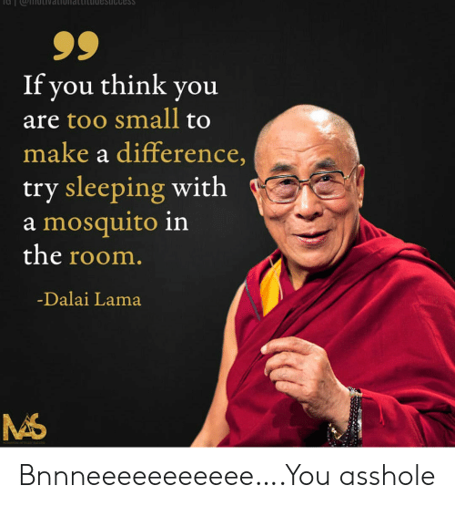 Too Small: Cess  If you think you  are too small to  make a difference,  try sleeping with  a mosquito in  the room.  -Dalai Lama Bnnneeeeeeeeeee….You asshole