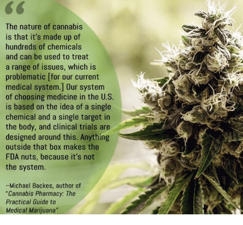 """Backes: CG  The nature of cannabis  is that it's made up of  hundreds of chemicals  and can be used to treat  a range of issues, which is  problematic [for our current  medical system.] Our system  of choosing medicine in the U.S.  is based on the idea of a single  chemical and a single target in  the body, and clinical trials are  designed around this. Anything  outside that box makes the  FDA nuts, because it's not  the system.  -Michael Backes, author of  """"Cannabis Pharmacy: The  Practical Guide to  Medical Marijuana"""""""