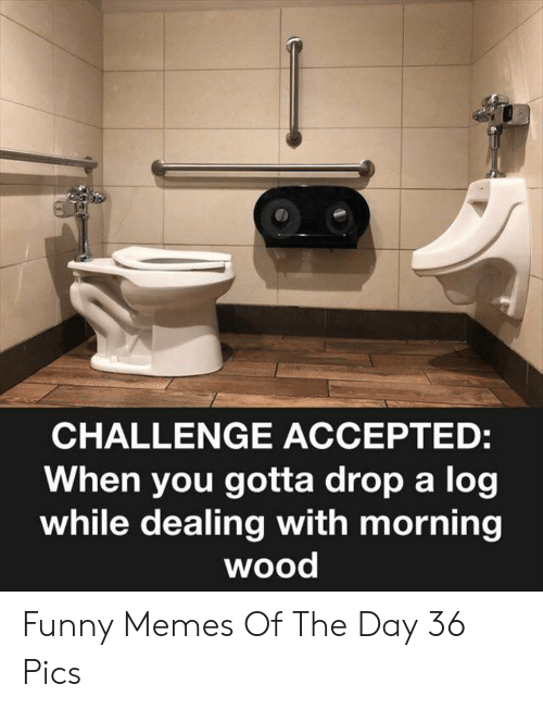 challenge accepted: CHALLENGE ACCEPTED:  When you gotta drop a log  while dealing with morning  wood Funny Memes Of The Day 36 Pics