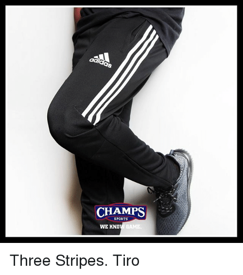 Memes, Sports, and Game: CHAMPS  SPORTS  GAME  WE KNO Three Stripes. Tiro