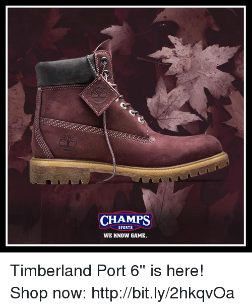 Memes, Sports, and Timberland: CHAMPS  SPORTS  WE KNOW GAME. Timberland Port 6'' is here!  Shop now: http://bit.ly/2hkqvOa