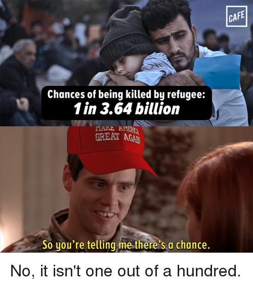 Your Telling Me: Chances of being killed by refugee:  1 in 3.64 billion  A  GREAT ACAh  So you're telling me there's a chance.  CAFE No, it isn't one out of a hundred.