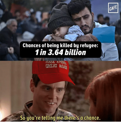 Your Telling Me: Chances of being killed by refugee:  1 in 3.64 billion  GREAT AGA  So you're telling me there's a chance.  CAFE
