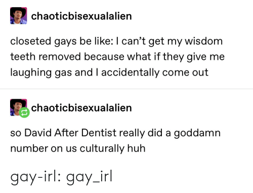 dentist: chaoticbisexualalien  closeted gays be like: I can't get my wisdom  teeth removed because what if they give me  laughing gas and I accidentally come out  chaoticbisexualalien  so David After Dentist really did a goddamn  number on us culturally huh gay-irl: gay_irl