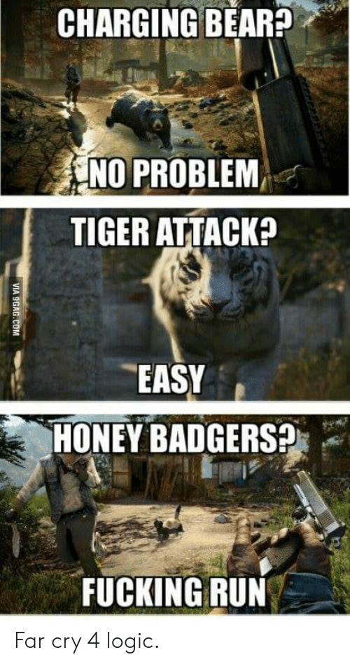 honey badgers: CHARGING BEAR?  NO PROBLEM,  TIGER ATTACK?  EASY  HONEY BADGERS?  FUCKING RUN  VIA 9GAG.COM Far cry 4 logic.