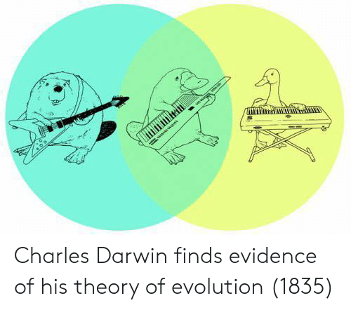 Charles Darwin: Charles Darwin finds evidence of his theory of evolution (1835)