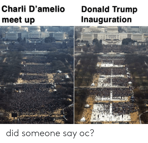 Donald Trump, Reddit, and Trump: Charli D'amelio  Donald Trump  Inauguration  meet up did someone say oc?