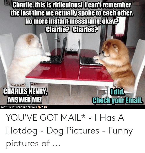 You Ve Got Mail Meme: Charlie, this is ridiculous! Ican'tremember  the last time weactually spoke to each other.  No more instantmessaging,okay?  Charlie? Charles?  G  Odin  Check your Email.  CHARLES HENRY,  ANSWER ME!  ICANHASOHEE2BUR GER COM YOU'VE GOT MAIL* - I Has A Hotdog - Dog Pictures - Funny pictures of ...