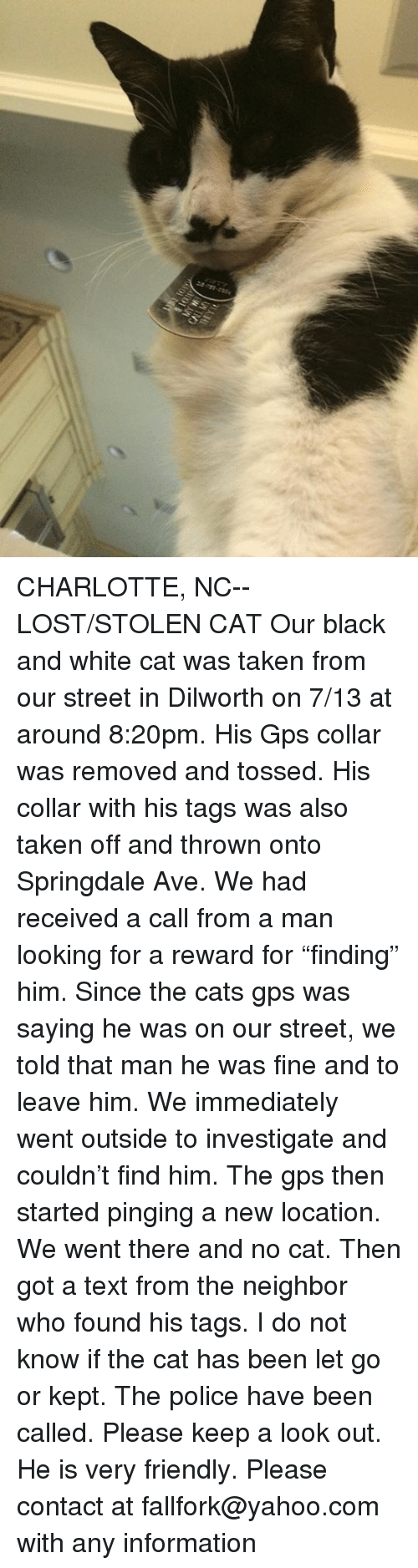 "Cats, Memes, and Police: CHARLOTTE, NC-- LOST/STOLEN CAT  Our black and white cat was taken from our street in Dilworth on 7/13 at around 8:20pm. His Gps collar was removed and tossed. His collar with his tags was also taken off and thrown onto Springdale Ave. We had received a call from a man looking for a reward for ""finding"" him. Since the cats gps was saying he was on our street, we told that man he was fine and to leave him. We immediately went outside to investigate and couldn't find him. The gps then started pinging a new location. We went there and no cat. Then got a text from the neighbor who found his tags. I do not know if the cat has been let go or kept. The police have been called. Please keep a look out. He is very friendly. Please contact at fallfork@yahoo.com with any information"