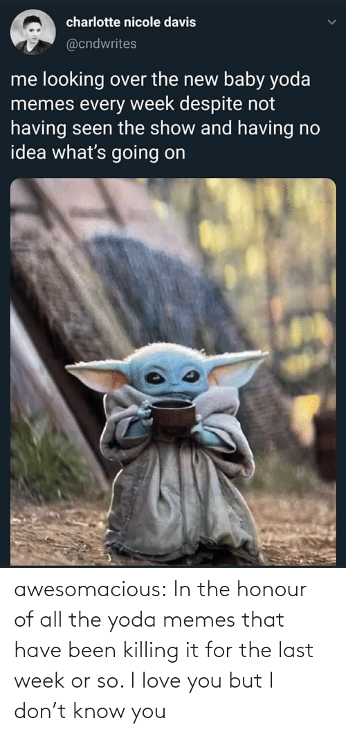 Memes That: charlotte nicole davis  @cndwrites  me looking over the new baby yoda  memes every week despite not  having seen the show and having no  idea what's going on awesomacious:  In the honour of all the yoda memes that have been killing it for the last week or so. I love you but I don't know you