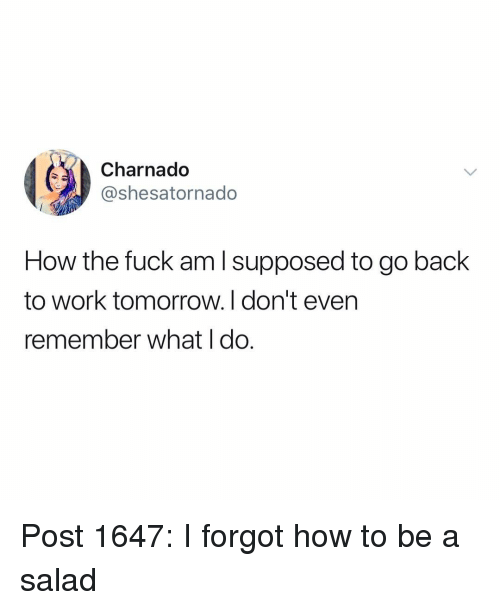 How To Be A: Charnado  @shesatornado  How the fuck am l supposed to go back  to work tomorrow. I don't even  remember what I do. Post 1647: I forgot how to be a salad