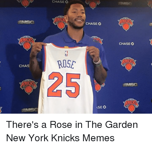 Knicks Memes: CHASE O  ROSE  CHAS  CHASEO  VSE O  CHASEO There's a Rose in The Garden New York Knicks Memes