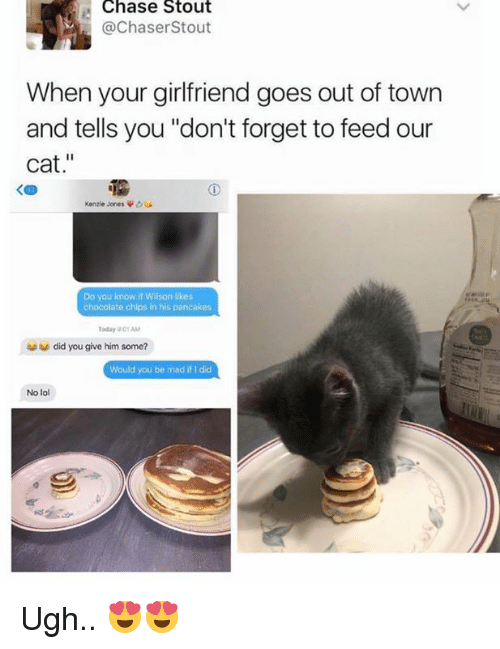"Memes, 🤖, and Cat: Chase Stout  @Chaser Stout  When your girlfriend goes out of town  and tells you ""don't forget to feed our  cat  Kenzie Jones  Do you know if Wilson likes  chocolate chips in his pancakes  Today 01AM  did you give him some?  Would you be mad if did  No lol Ugh.. 😍😍"
