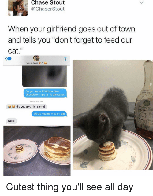 "Cats, Girl Memes, and Cat: Chase Stout  ChaserStout  When your girlfriend goes out of town  and tells you ""don't forget to feed our  cat  zo  Kenzie Jones  Do you know if Wilson likes  chocolate chips in his pancakes  Today 9:01 AM  did you give him some?  Would you be mad if I did  No lo Cutest thing you'll see all day"