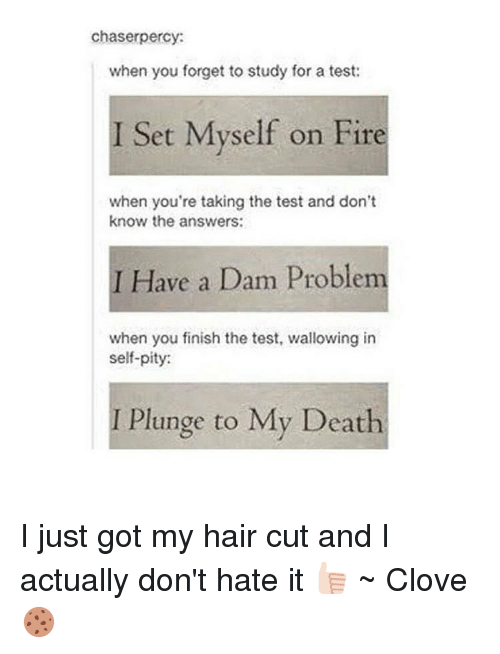 wallowed in self pity: chaser percy:  when you forget to study for a test:  I Set Myself on Fire  when you're taking the test and don't  know the answers:  I Have a Dam Problem  when you finish the test, wallowing in  self-pity:  I Plunge to My Death I just got my hair cut and I actually don't hate it 👍🏻 ~ Clove 🍪