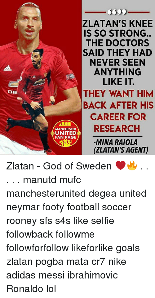 Adidas, Football, and Goals: CHE  ZLATAN'S KNEE  IS SO STRONG.  THE DOCTORS  A SAID THEY HAD  NEVER SEEN  ANYTHING  LIKE IT.  THEY WANT HIM  BACK AFTER HIS  CAREER FOR  RESEARCH  MANCHESTER  UNITED  FAN PAGE  MINA RAIOLA  (ZLATAN'S AGENT) Zlatan - God of Sweden ❤️🔥 . . . . . manutd mufc manchesterunited degea united neymar footy football soccer rooney sfs s4s like selfie followback followme followforfollow likeforlike goals zlatan pogba mata cr7 nike adidas messi ibrahimovic Ronaldo lol