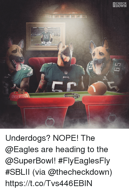 Philadelphia Eagles, Memes, and Superbowl: CHECK  DOWN  AR  65  ATL 1  PHI 15  UNDERNGGS Underdogs? NOPE!  The @Eagles are heading to the @SuperBowl! #FlyEaglesFly #SBLII (via @thecheckdown) https://t.co/Tvs446EBIN