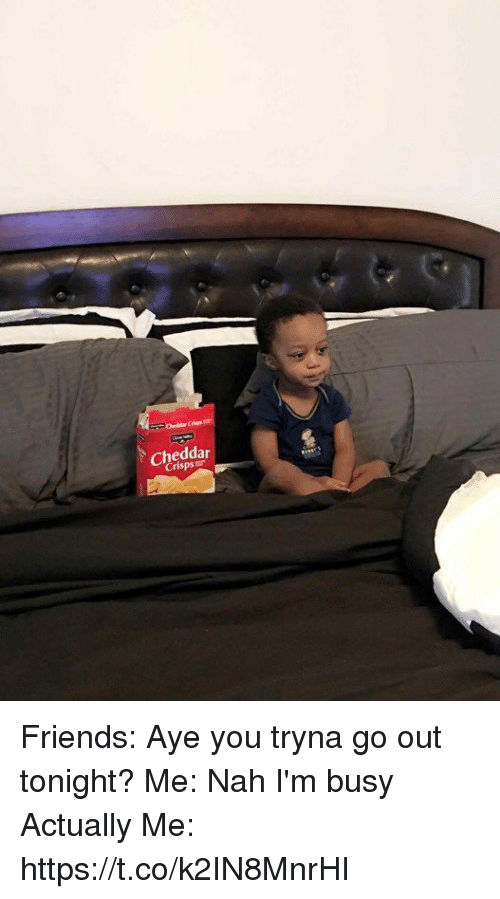 Friends, Funny, and You: Cheddar Friends: Aye you tryna go out tonight?  Me: Nah I'm busy  Actually Me: https://t.co/k2IN8MnrHI