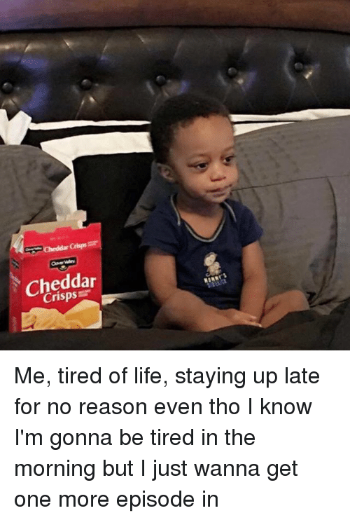Life: cheddar Me, tired of life, staying up late for no reason even tho I know I'm gonna be tired in the morning but I just wanna get one more episode in