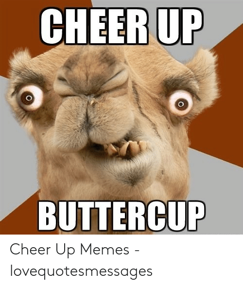 Lovequotesmessages: CHEER UP  BUTTERCUP Cheer Up Memes - lovequotesmessages