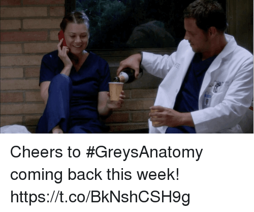 Memes, Back, and 🤖: Cheers to #GreysAnatomy coming back this week! https://t.co/BkNshCSH9g