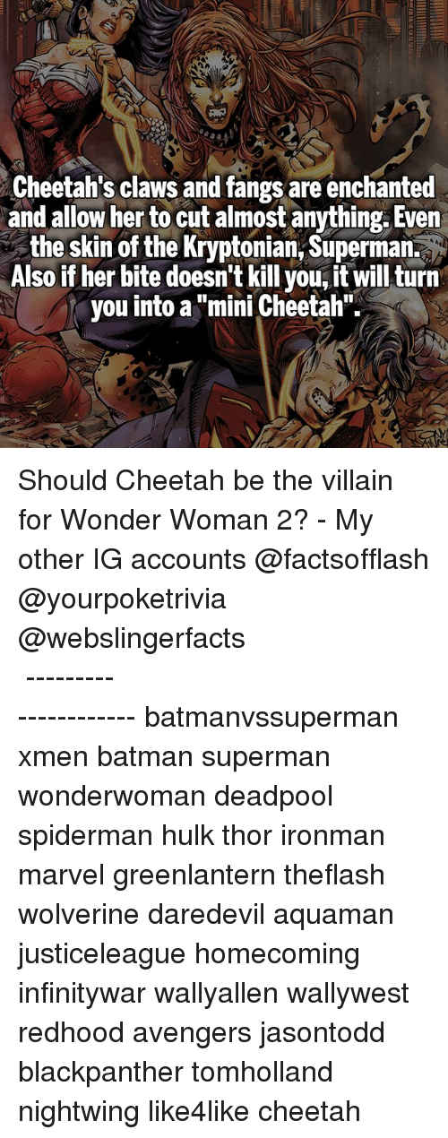 "Batman, Memes, and Superman: Cheetah's claws and fangs are enchanted  and allow her to cut almost anything. Even  the skin of the Kryptonian, Superman.  Also if her bite doesn't kill you, it will turn  you into a ""mini Cheetah"" Should Cheetah be the villain for Wonder Woman 2? - My other IG accounts @factsofflash @yourpoketrivia @webslingerfacts ⠀⠀⠀⠀⠀⠀⠀⠀⠀⠀⠀⠀⠀⠀⠀⠀⠀⠀⠀⠀⠀⠀⠀⠀⠀⠀⠀⠀⠀⠀⠀⠀⠀⠀⠀⠀ ⠀⠀--------------------- batmanvssuperman xmen batman superman wonderwoman deadpool spiderman hulk thor ironman marvel greenlantern theflash wolverine daredevil aquaman justiceleague homecoming infinitywar wallyallen wallywest redhood avengers jasontodd blackpanther tomholland nightwing like4like cheetah"