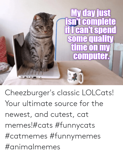 cutest: Cheezburger's classic LOLCats! Your ultimate source for the newest, and cutest, cat memes!#cats #funnycats #catmemes #funnymemes #animalmemes