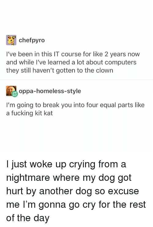 Computers, Crying, and Fucking: chefpyro  I've been in this IT course for like 2 years now  and while I've learned a lot about computers  they still haven't gotten to the clown  oppa-homeless-style  I'm going to break you into four equal parts like  a fucking kit kat I just woke up crying from a nightmare where my dog got hurt by another dog so excuse me I'm gonna go cry for the rest of the day