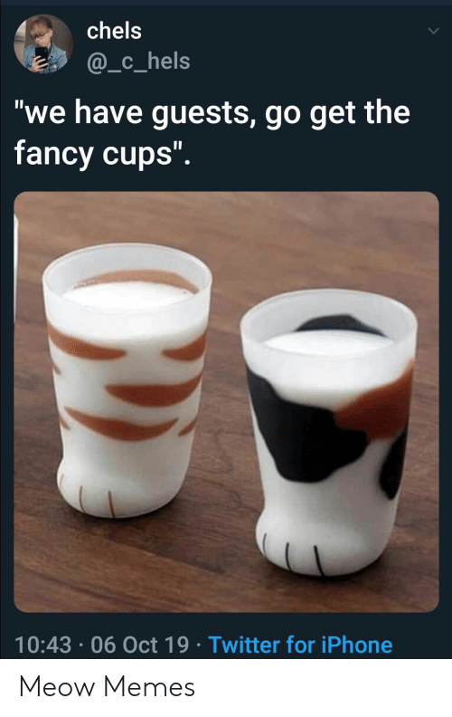"""Fancy: chels  @_c_hels  """"we have guests, go get the  fancy cups"""".  10:43 06 Oct 19 Twitter for iPhone Meow Memes"""