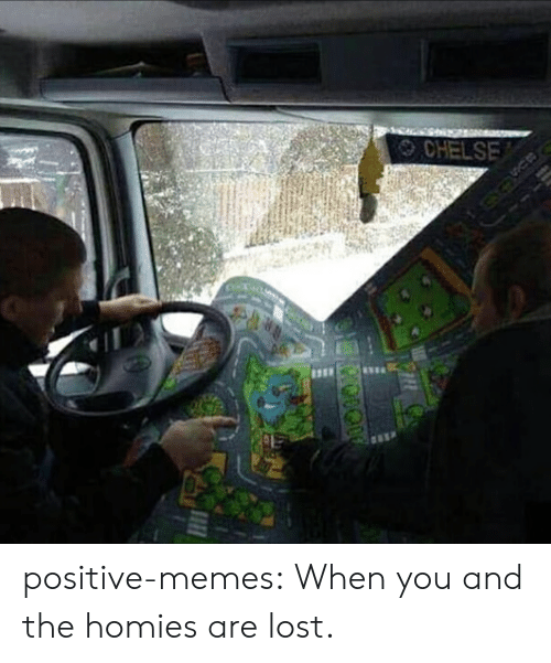 The Homies: CHELSE positive-memes:  When you and the homies are lost.