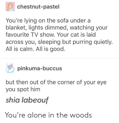 labeouf: chestnut-pastel  You're lying on the sofa under a  blanket, lights dimmed, watching your  favourite TV show. Your cat is laic  across you, sleeping but purring quietly.  All is calm. All is good.  pinkuma-buccus  but then out of the corner of your eye  you spot him  shia labeouf You're alone in the woods