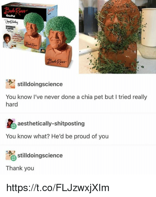 Memes, Thank You, and Proud: Chia Pet  PLANTER  stilldoingscience  You know I've never done a chia pet but I tried really  hard  aesthetically-shitposting  You know what? He'd be proud of you  tiloingscience  Thank you https://t.co/FLJzwxjXIm