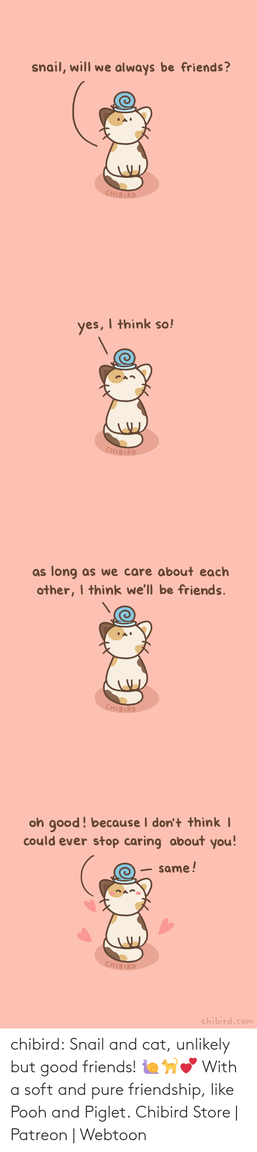 piglet: chibird:  Snail and cat, unlikely but good friends! 🐌🐈💕 With a soft and pure friendship, like Pooh and Piglet.  Chibird Store | Patreon | Webtoon