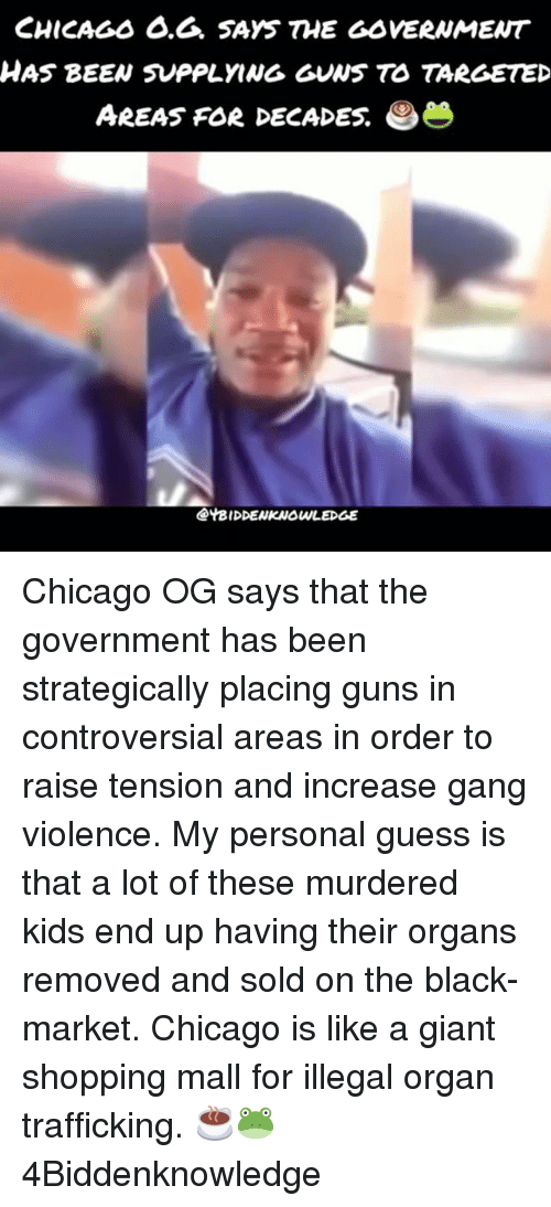 Organizing: CHICAGs 6.6. SAYS THE GOVERNMENT  HAS BEEN SUPPLYING GUNS TO TARGETED  AREAS FOR DECADES.  @YBIDDENKNOWLEDGE Chicago OG says that the government has been strategically placing guns in controversial areas in order to raise tension and increase gang violence. My personal guess is that a lot of these murdered kids end up having their organs removed and sold on the black-market. Chicago is like a giant shopping mall for illegal organ trafficking. ☕🐸 4Biddenknowledge