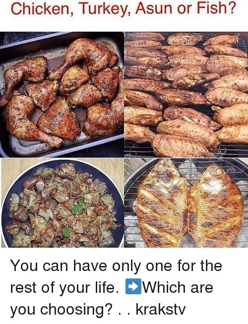 Life, Memes, and Chicken: Chicken, Turkey. Asun or Fish? You can have only one for the rest of your life. ➡️Which are you choosing? . . krakstv