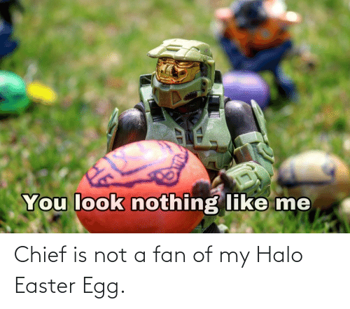 Halo: Chief is not a fan of my Halo Easter Egg.